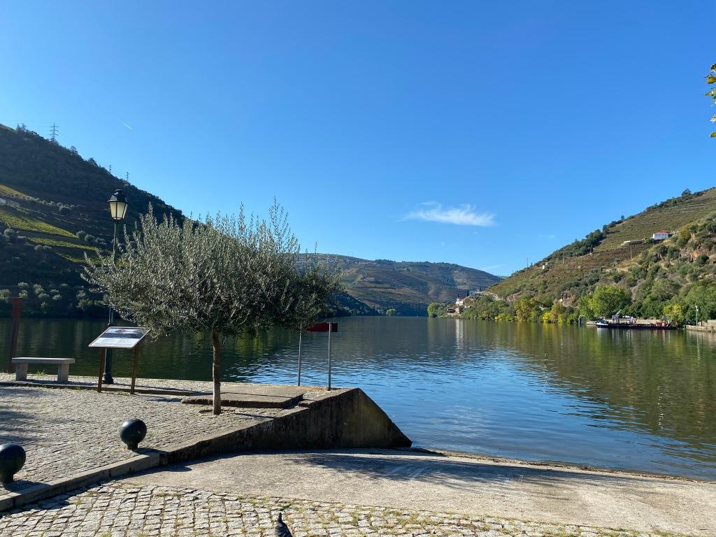 The Douro River from Pinhão
